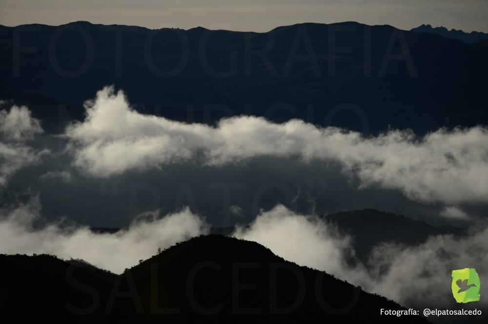 Chingaza DSC_8147 MARCADA